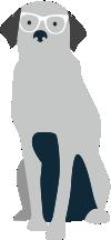 diseño web en Coruña